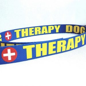 1 Inch Therapy Dog Blue Yellow Red