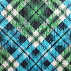 Argyll 2 Green Blue Puppy