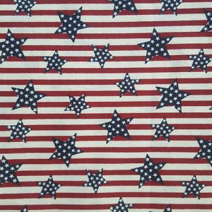 Patriot Red Stripes Blues Dotted Stars