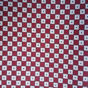 Patriot Picnic Check Red White